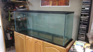 110 Gallon Tank, Comes with Many Accessories