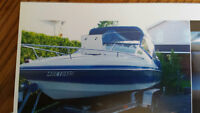 20 ft Wellcraft for sale