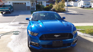 2017 Ford Mustang GT with no mileage, won at casino