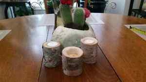 Birch bark tea light holder,set of 24. wedding perfect.