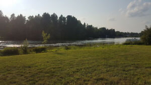Build Your Dream Home/Cottage on the Ahmic Lake System