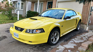 2001 Ford Mustang Gt Coupe (2 door)