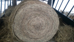 """""""Cut for Quality""""-Wrapped Hay"""