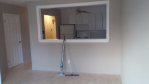newly renovated. all included 750- 2 bedroom downtown