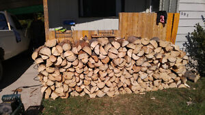 Dry mixed and split Firewood. Full cord $240.00