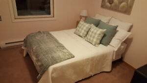 Sealy Double bed, great condition