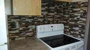 BACKSPLASH SPECIAL ($450 FLAT RATE FOR UNDER 30 SQ FT) Regina Regina Area image 4