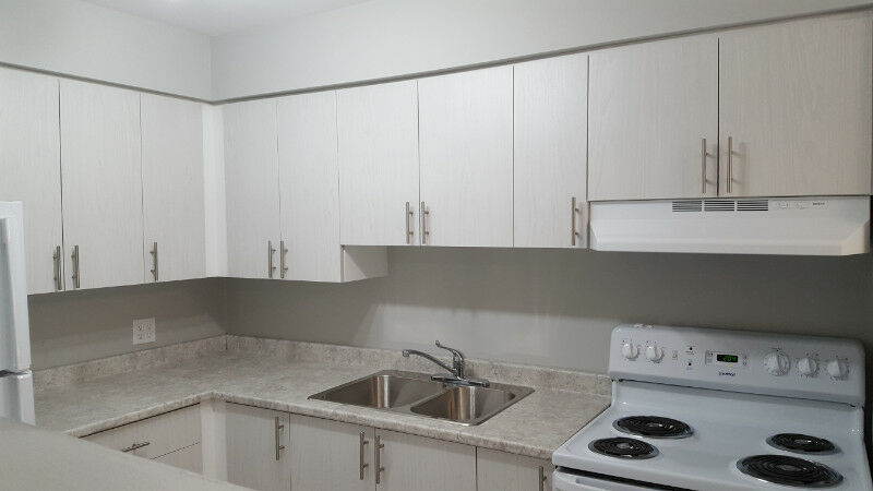 Brilliant Newly Renovated 2 3 Bedroom Condo Style Apartments Home Interior And Landscaping Oversignezvosmurscom