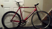 NINETEEN RICHTER Road Bike FRAME ONLY - BRAND NEW!!!!!