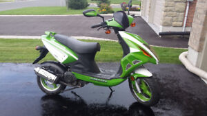 Chironex Chase 50cc - great condition - $750 o.b.o.
