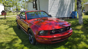 2008 Ford Mustang Convertible V6 Leather