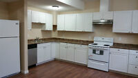 Two Bedrooms (New Legal Basement Suites) on Rent