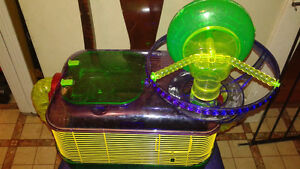 CAGE MICE OR RAT CAGE $25 FIRM Peterborough Peterborough Area image 1