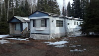 Great Starter Property with Dream Cabin Potential