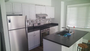 **Newly Renovated 2 Bedroom Ground Floor Apartment w/Utilities**