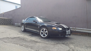 Mustang supercharge 2004 gt