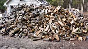 Firewood for sale. Campfire and hardwood