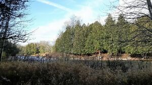 FANTASTIC 47 ACRE PARCEL ON THE EDGE OF TOWN Kitchener / Waterloo Kitchener Area image 7