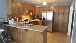 Kitchen Cabinets for quick sale! $650.00 or Best Offer!!
