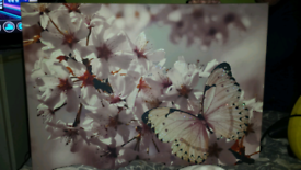 Butterfly glitter picture