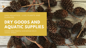 Indian Almond Leaves, Alder Cones, Cholla Wood & More!