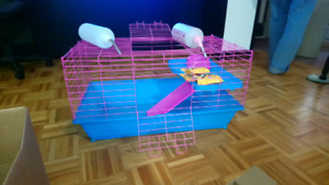 Rabbit/ bunny cage