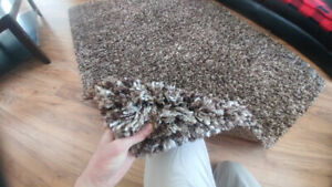 Tapis Neuf Buy Or Sell Rugs Carpets Runners In Ottawa