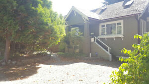 Fully Furnished 3-Bedroom Basement Suite in Kitsilano