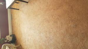 60 oz carpet