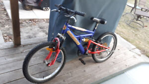 "Boys 20"" 5 speed mtn bike"