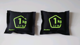 Subea 1kg diving weights