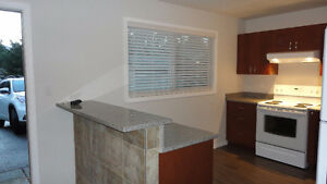 3BR FULLY RENOVATED HALF DUPLEX FOR RENT