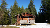 Cozy 1 Bedroom House for Rent in Slocan Valley