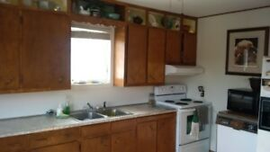 3 bedroom, beautiful house, on the river in Hoyt, for Rent