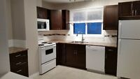 Fully Renovated Half Duplex on South Side in King Edward Park