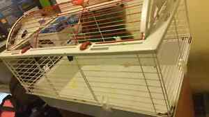 Guinea pig cage for sale.