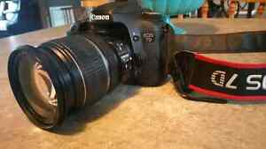 Canon EOS 7D & EFS 17-55mm IS lens
