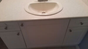 Bathroom cabinets and countertop