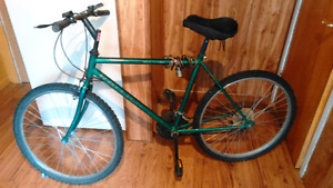 Mens green Raleigh mountain bike that works and is very reliable