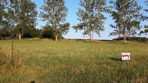 Build your own home on .46 acre lot! Kitchener / Waterloo Kitchener Area image 2