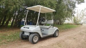 BRAND NEW BATTERIES IN THIS GOLF CART!