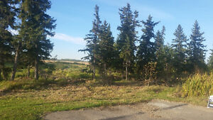 Acreage Land Near Beaumont $168, 000