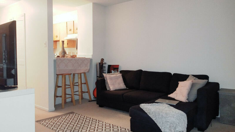 Studio Apartment Heart Of Downtown Ottawa May 1st