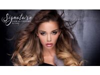 Signature Hair Extension Nottingham specialist in shrinkies / shrink links