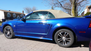 ford mustang 2004 convertible