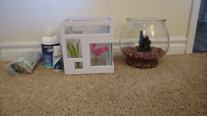 2 fish bowls, water equalizer, food and accessories!