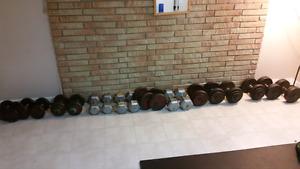 Full set Dumbbells 15-60