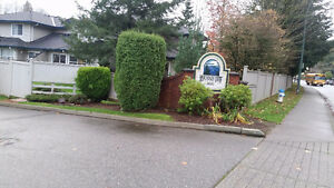 3 bedrooms townhouse for rent (Whatcom area).