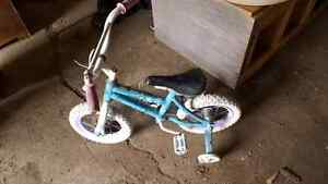 Toddler tricycle and 2 wheel bike