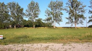 Build your own home on .46 acre lot! Kitchener / Waterloo Kitchener Area image 5